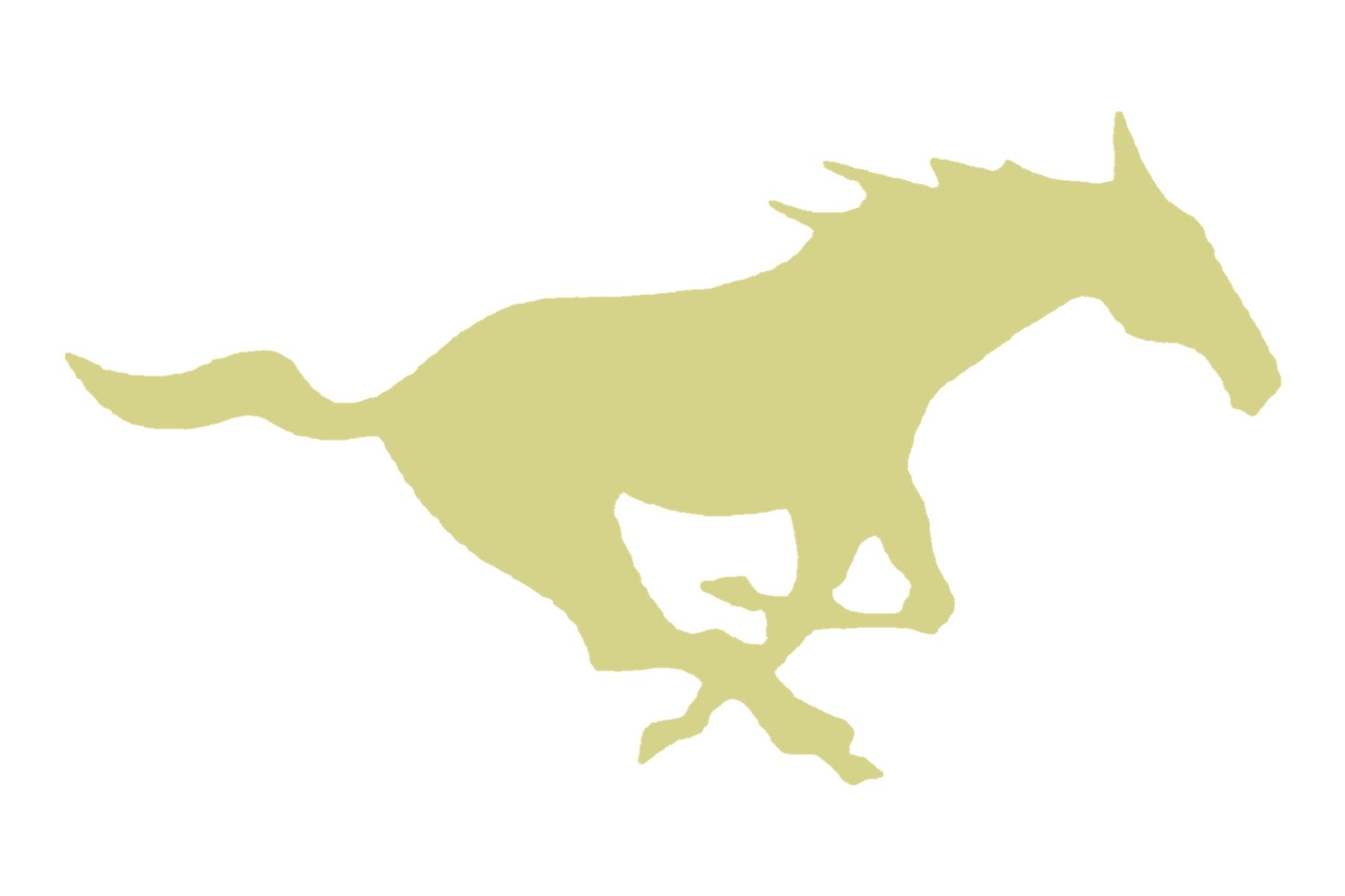 Redmond Mustang Football